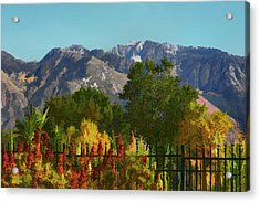 Wasatch Mountains In Autumn Painting Acrylic Print by Tracie Kaska