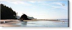 Washington Shore Acrylic Print