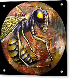 Wasp Acrylic Print by Rust Dill