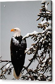 Acrylic Print featuring the photograph Watching Over The U.s.a. by Shawn Hughes