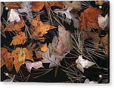 Water And Leafs  Acrylic Print by Mike Stouffer