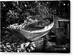 Acrylic Print featuring the photograph Water Canoe by Thanh Tran
