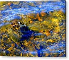 Water Circle Acrylic Print