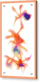 Water Color Orchids Acrylic Print by Judi Bagwell