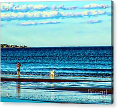 Water Dog From Dog Park Beach Series Acrylic Print
