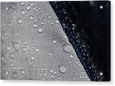 Acrylic Print featuring the photograph Water Droplets by Ester  Rogers