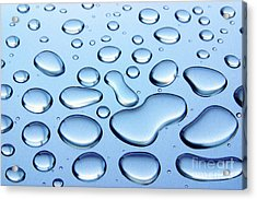Water Drops Acrylic Print by Carlos Caetano