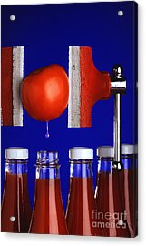 Water Extraction From Tomato Acrylic Print by Photo Researchers