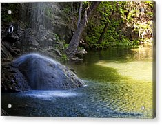 Water Falling On Rock Acrylic Print by Lisa  Spencer