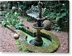 Acrylic Print featuring the photograph Water Feature by Katy Mei