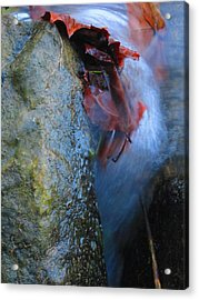 Water Maiden Acrylic Print by Lynn Dodds