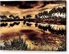 Water Acrylic Print by Nicky Ledesma