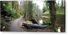 Water Of Leith Acrylic Print by David Armas