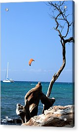 Water Sports In Hawaii 2 Acrylic Print by Karen Nicholson