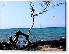 Acrylic Print featuring the photograph Water Sports In Hawaii by Karen Nicholson