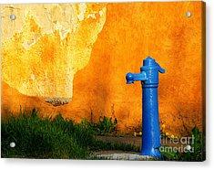 Water Well Acrylic Print by Odon Czintos