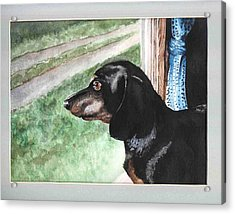 Watercolor Dog Acrylic Print by Kyle Gray