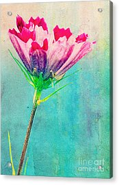 Watercolor Flower Acrylic Print