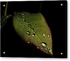 Watered-leaf Acrylic Print by Rosvin Des Bouillons