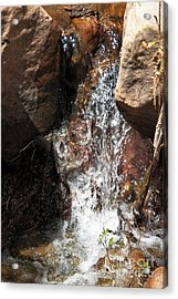 Waterfall Acrylic Print by Ashiley Slaymaker