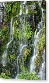 Waterfall At Columbia River Washington Acrylic Print by Ted J Clutter and Photo Researchers