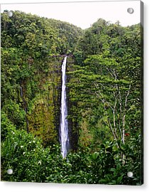 waterfall Hawai Acrylic Print by Luis and Paula Lopez