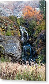 Acrylic Print featuring the photograph Waterfall Marion Creek by Gary Rose