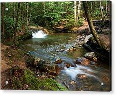 Waterfalls At The Basin Acrylic Print by David Gilman