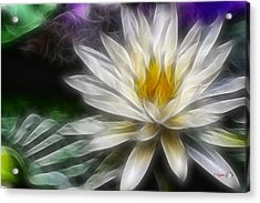 Acrylic Print featuring the digital art Waterlily In Pseudo-fractal by Lynne Jenkins