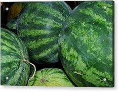 Watermelon Acrylic Print by Diane Lent