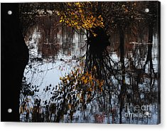 Acrylic Print featuring the photograph Waterpainting by Tamera James