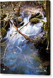 Waters Creek - Spring 2011 Acrylic Print by Jim Adams