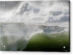 Wave Acrylic Print by Barbara Walsh