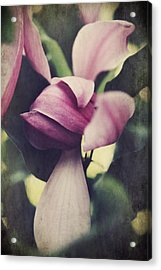 We Knew What Had To Be Acrylic Print by Laurie Search