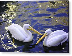 We Share A Heart Acrylic Print by DiDi Higginbotham