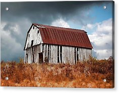 Acrylic Print featuring the photograph Weathering The Storm by Renee Hardison