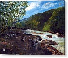 Webster Springs Stream Acrylic Print by Phil Burton