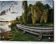 Acrylic Print featuring the photograph Weeping Willow Boardwalk by Scott Holmes
