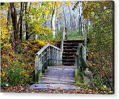 Welcome To My World Acrylic Print by Kay Novy