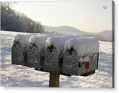 Welcomed Mail Acrylic Print by Margaret Steinmeyer