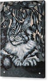 Well Fed Cat Acrylic Print by Elena Melnikova