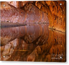 West Fork Illusion Acrylic Print by Mike  Dawson