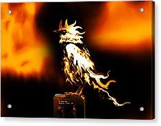 Western Bluebird Fire Acrylic Print