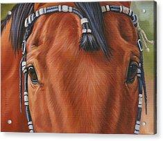 Western Braids Acrylic Print by Kathleen  Hill