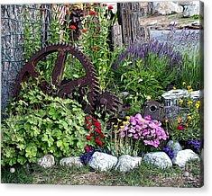 Acrylic Print featuring the photograph Western Garden by Anne Raczkowski