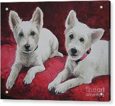 Acrylic Print featuring the painting Westies by Jindra Noewi