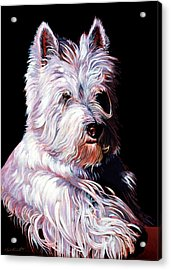 Westy Acrylic Print by Bob Coonts