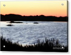 Acrylic Print featuring the photograph Wetland by Henrik Lehnerer