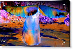 Whales Tail Acrylic Print by Randall Weidner