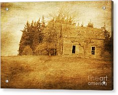 What Has History Taught Acrylic Print by Terrie Taylor